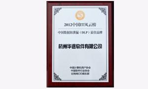 中国数据防泄漏最佳品牌